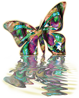 full-color-butterfly